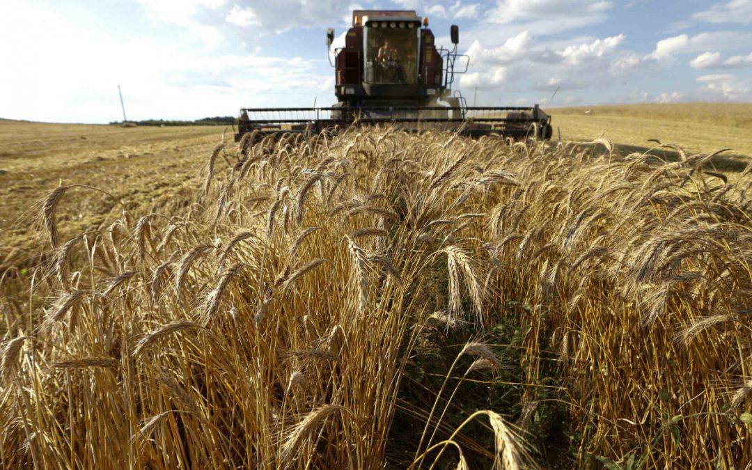 Desacuerdo con las medidas adoptadas por el Gobierno hacia el sector rural