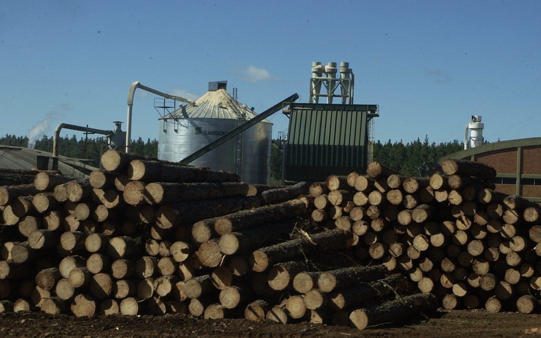 Sobre la ayuda a la cadena foresto industrial
