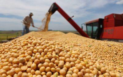 Informe especial: De las 500 mayores exportadoras argentinas, 336 son empresas de base agroproductivaArgentina, uno de los 15 mayores agroexportadores del mundo