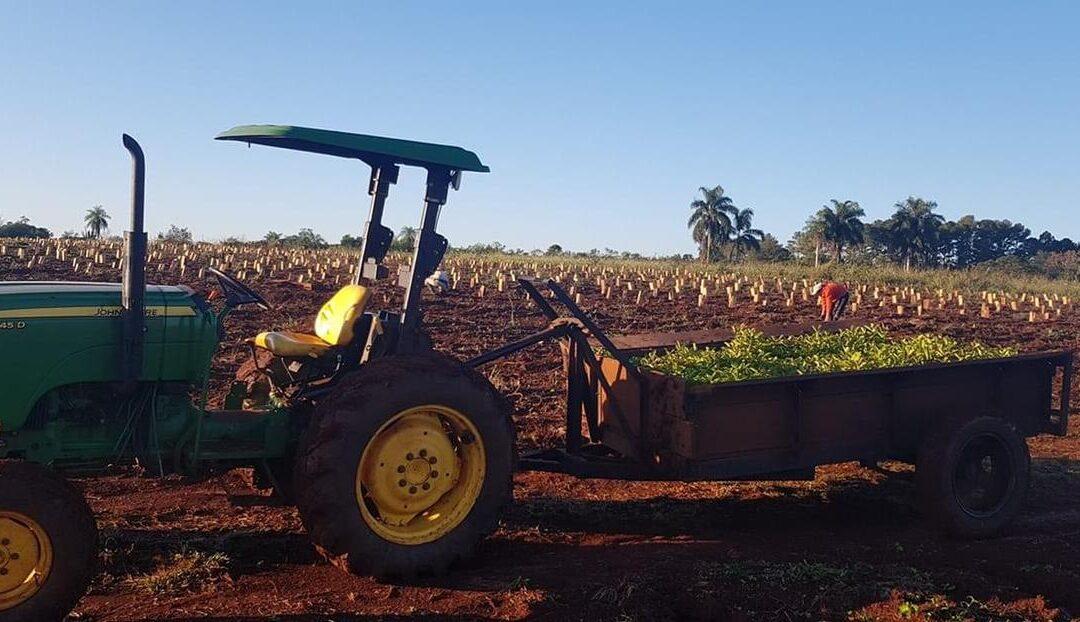 Financiamiento a productores de Misiones para promover la producciónEntrega de microcréditos en el Norte del país